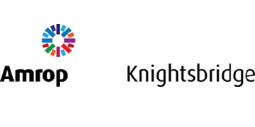 Amrop Knightsbridge Executive Search logo